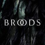 Broods-we-had-everything-skyelyfe